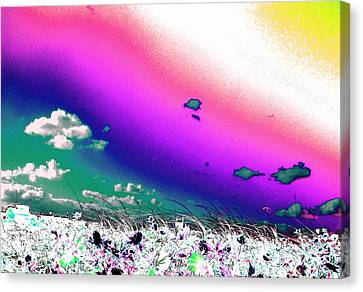 Rainbow Borealis Canvas Print