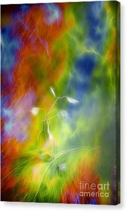 Harmonious Canvas Print - Rainbow Bridge by Veikko Suikkanen