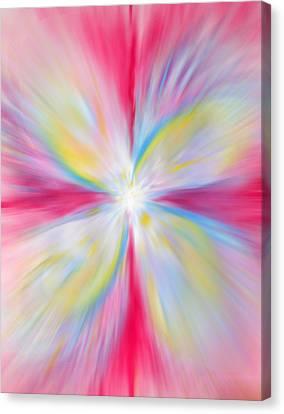 Rainbow Burst Canvas Print by Anne Cameron Cutri