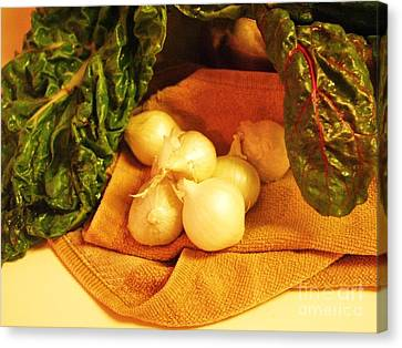 Rainbow Chard And Pearl Onions Canvas Print by Jamey Balester