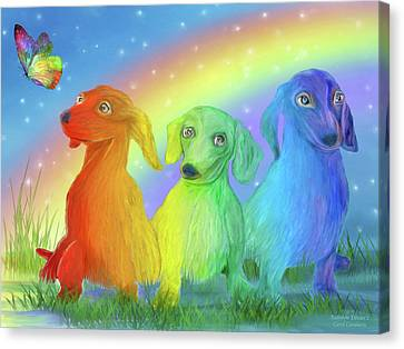 Rainbow Doxies 2 Canvas Print