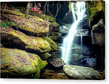 Canvas Print featuring the photograph Rainbow Falls At Dismals Canyon by David Morefield