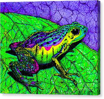 Rainbow Frog 2 Canvas Print by Nick Gustafson