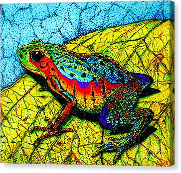 Rainbow Frog Canvas Print by Nick Gustafson