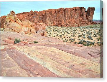 Canvas Print featuring the photograph Rainbow Of Color In Valley Of Fire by Ray Mathis