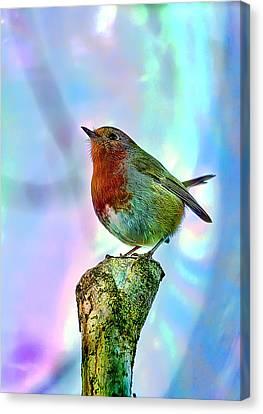 Canvas Print featuring the photograph Rainbow Robin by Gouzel -