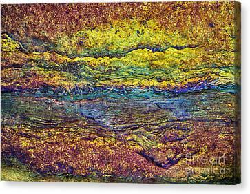Rainbow Rock  Canvas Print by Tim Gainey