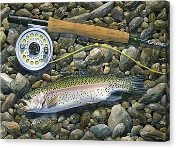 Rainbow Rocks Canvas Print by Mark Jennings