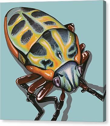 Canvas Print featuring the painting Rainbow Shield Beetle by Jude Labuszewski