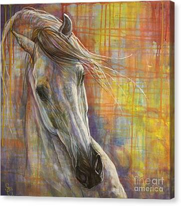 Rainbow  Canvas Print by Silvana Gabudean