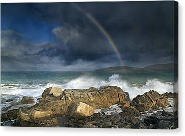 Rainbow To Heaven Shamrock Shores  Canvas Print by Betsy Knapp