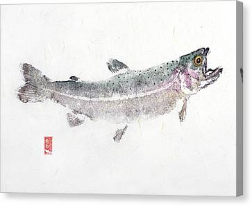 Rainbow Trout #0007 Canvas Print by Kirby Wilson