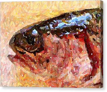 Rainbow Trout  Canvas Print by Carol Grimes