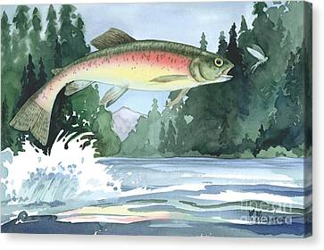 Rainbow Trout Canvas Print by Paul Brent
