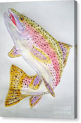 Rainbow Trout Presented In Colored Pencil Canvas Print by Scott D Van Osdol