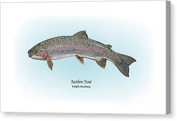 Rainbow Trout Canvas Print by Ralph Martens
