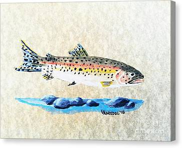 Rainbow Trout Watercolor Painting Canvas Print
