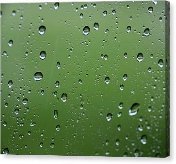 Raindrops  2 Canvas Print