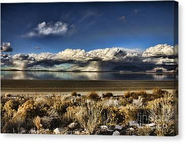 Rainfall Over The Salt Lake Canvas Print by Douglas Barnard