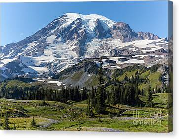 Rainier Mazama Ridge Canvas Print by Mike Reid