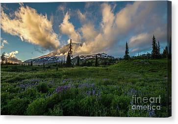 Rainier Wildflowers Meadows Golden Sunset Clouds Canvas Print