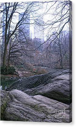 Rainy Day In Central Park Canvas Print by Sandy Moulder