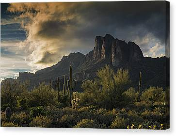Rainy Day In The Superstitions  Canvas Print