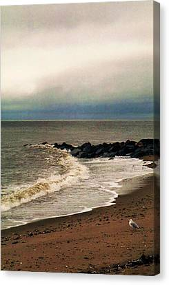 Canvas Print featuring the photograph Rainy Day by John Scates