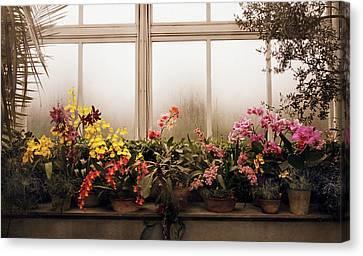 Rainy Day Orchids Canvas Print by Jessica Jenney