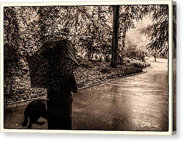 Canvas Print featuring the photograph Rainy Day - Woman And Dog by Madeline Ellis