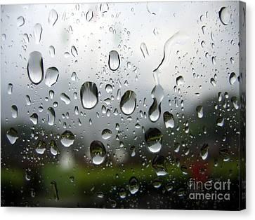 Rainy Day Canvas Print by Yali Shi