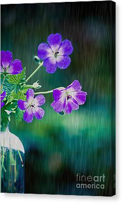 Rainy Days And Mondays Canvas Print by Jan Bickerton