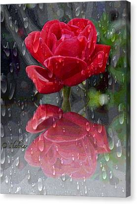 Rainy Reflection  Canvas Print