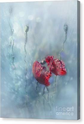 Rainy Summer Canvas Print
