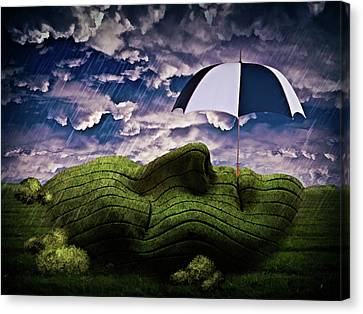 Rainy Summer Day Canvas Print by Mihaela Pater