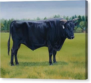 Kobe Canvas Print - Ralphs Bull by Stacey Neumiller