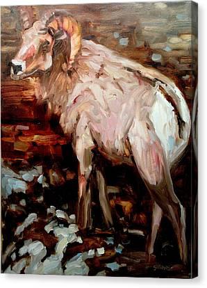 RAM Canvas Print by Brian Simons