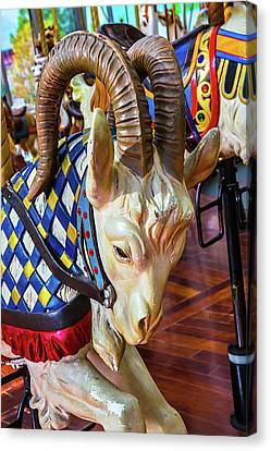 Ram Carrousel Ride Canvas Print by Garry Gay