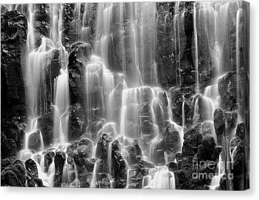 Ramona Falls Close-up Canvas Print