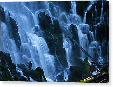 Ramona Falls In Close Canvas Print by Todd Kreuter