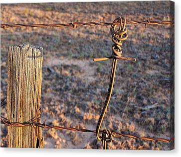 The Old Ranch Fence Canvas Print