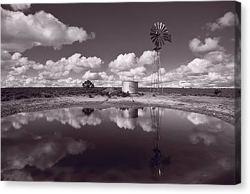 Ranch Pond New Mexico Canvas Print by Steve Gadomski