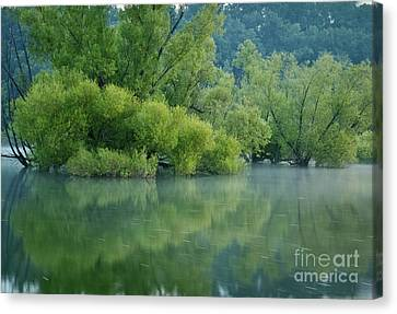 Canvas Print featuring the photograph Rankin Reflections 2 by Douglas Stucky