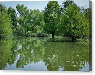 Canvas Print featuring the photograph Rankin Reflections 3 by Douglas Stucky