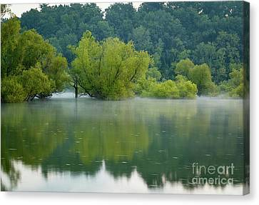 Canvas Print featuring the photograph Rankin Reflections by Douglas Stucky