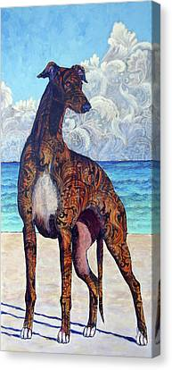 Greyhound Canvas Print - Rapidly With Extreme Brightness by Ande Hall
