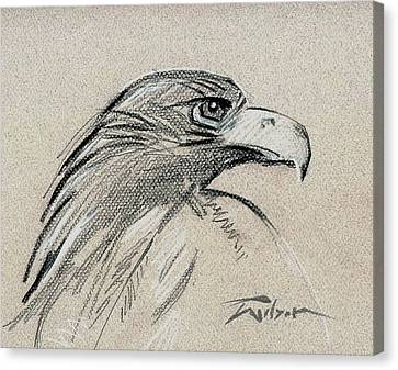 Raptor Two Canvas Print by Ron Wilson