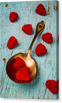 Raspberries With Antique Spoon Canvas Print by Garry Gay
