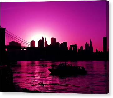 Raspberry Ice In Silhouette Canvas Print