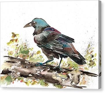 Raven 1 Canvas Print